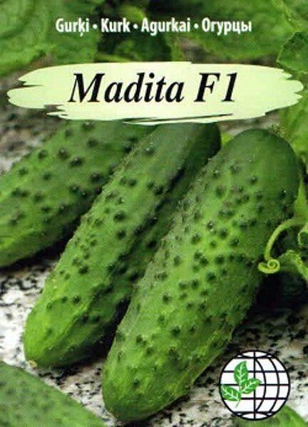 Gurķi MADITA F1 12 gab Agrimatco