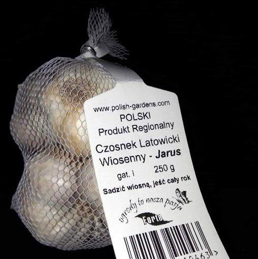 Vasaras ķiploki Jarus  1 iepakojums  (~250 g) Polija