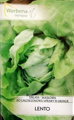 Salāti galviņu Lento 1 g Webena art