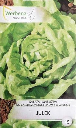 Salāti galviņu JULEK 1 g Werbena art