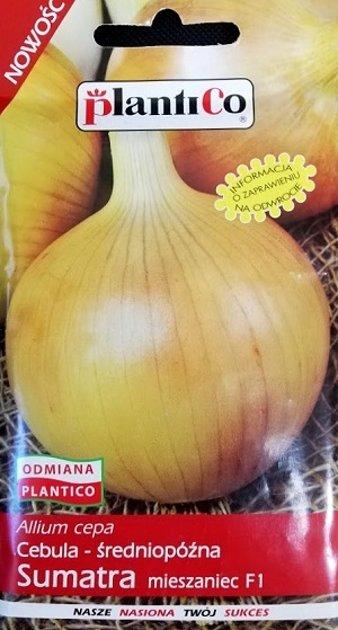 Sīpoli Sumatra F1 5 g PlantiCo