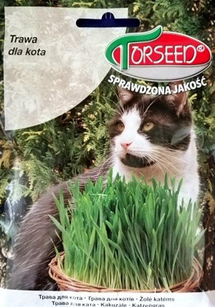 Kaķu zāle 30 g Torseed