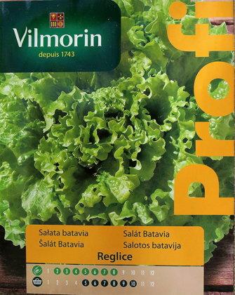 Salāti lapu REGLICE 500 mg  Vilmorin