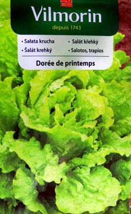 Salāti ledus DOREE DE PRINTEMPS 1 g Vilmorin