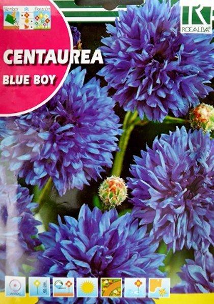 Rudzupuķes Blue Boy 10 g Rocalba