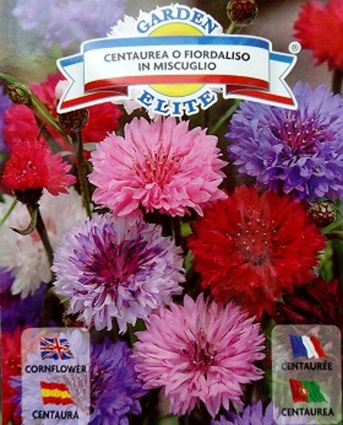 Rudzupuķes FIORDALISO MIX 1 g Galassi Sementi