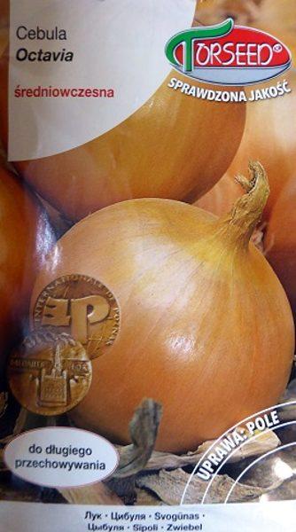 Sīpoli Octavia 5 g Torseed