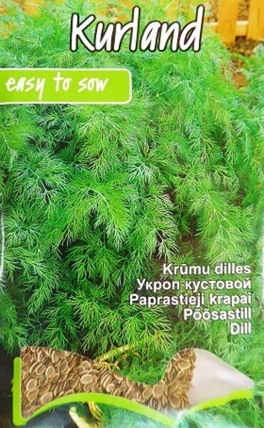 Dilles krūmu Kurland 5 g Kurzemes sēklas