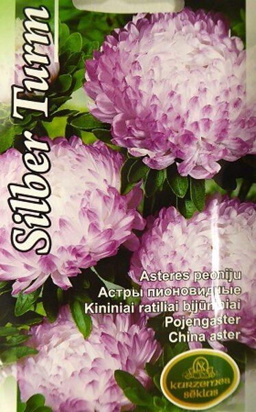 Asteres ķīnas Silber Turm 0.5 g Kurzemes Sēklas