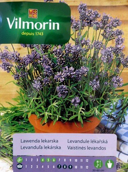 Ārstnieciskā jeb parastā lavanda 200 mg Vilmorin