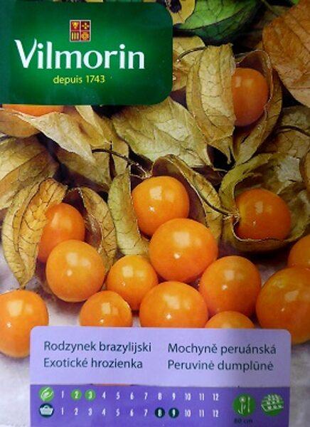 Alkekengi fizālis 100 mg Vilmorin