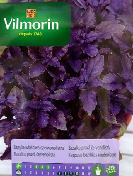 Sarkanlapu baziliks 500 mg Vilmorin