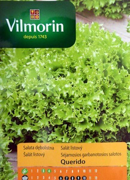 Salāti lapu Querido 500 mg Vilmorin
