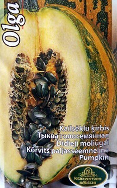 Ķirbji OLGA 1.5 g Kurzemes Sēklas