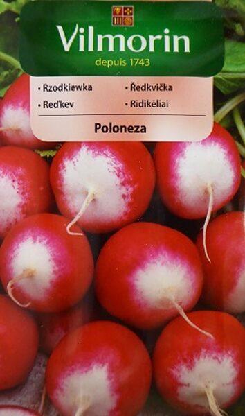 Redīsi Poloneza 5 g Vilmorin