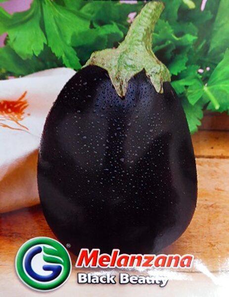 Baklažāni Black Beauty 2.2 g Galassi Sementi