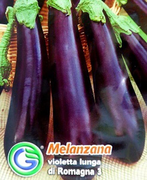 Baklažāni Violetta lunga di Romagna 3  2.2 g Galassi Sementi