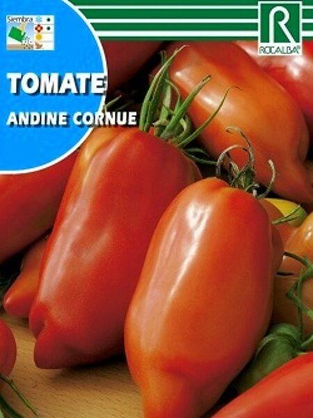 Tomāti Andine cornue 0.1 g ROCALBA