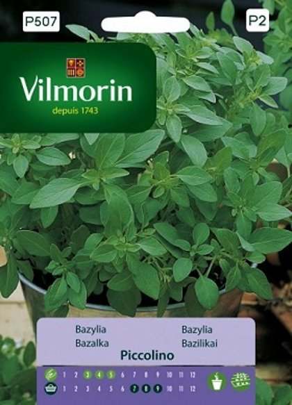 Baziliks Piccolino mini 1 g Vilmorin
