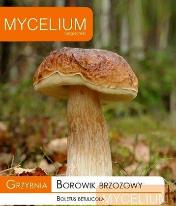 Bērzu baravikas micēlijs 10 g Mycelium