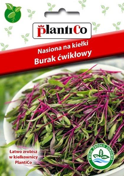 Sarkano biešu sēklas diedzēšanai 20 g PlantiCo