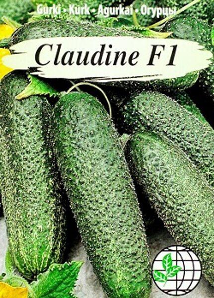 Gurķi CLAUDINE F1 12 gab Agrimatco