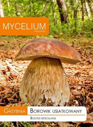 Ozolu baravikas micēlijs 10 g Mycelium