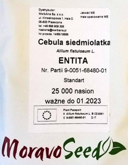 Loku sīpoli ENTITA 25000 gab Moravo Seed