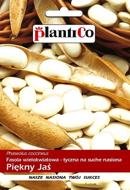 Pupas lobāmās Piękny Jaś 40 g PlantiCo