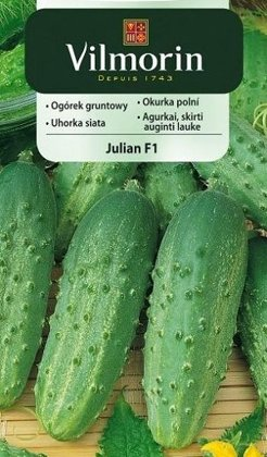 Gurķi Julian F1  5 g Vilmorin
