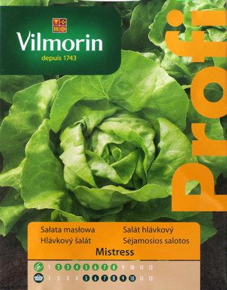 Salāti galviņu MISTRESS 500 g Vilmorin
