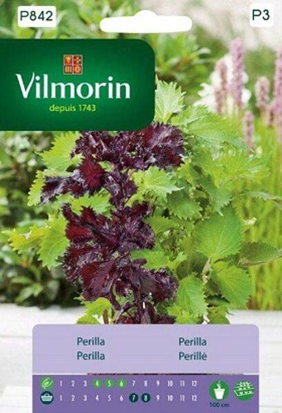 Perilla krūmveida   500 mg  Vilmorin