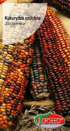 Dekoratīvā kukurūza Amero MIX 10 g Torseed